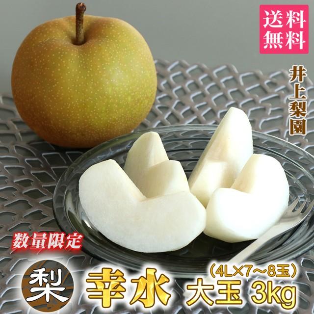 梨 幸水 約 3kg 送料無料 大玉 4L(約420g)×7〜8個 数量限定 なし 栃木 ふるさと 産直 果物 くだもの 果実 フルーツ ギフト プレゼント