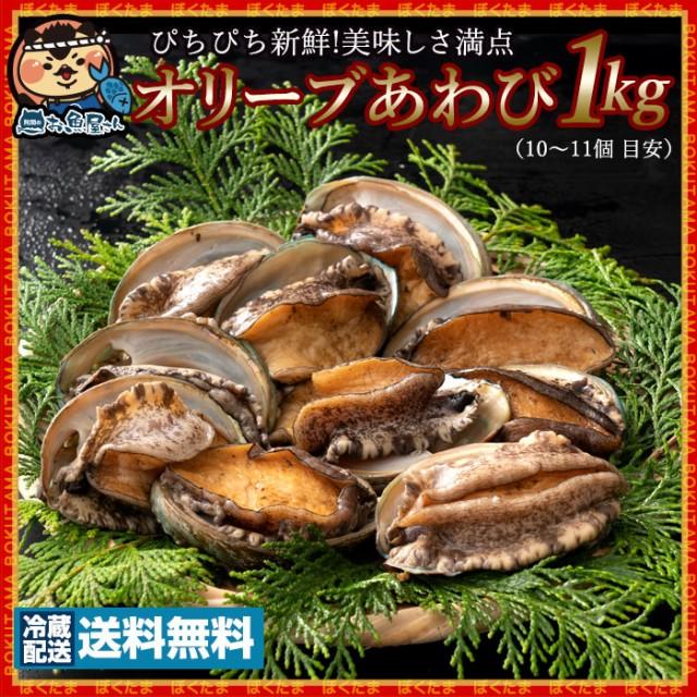 オリーブあわび 1kg (11〜12個 目安) (殻入り) (1個80g〜90g) 養殖 冷蔵 [送料無料 あわび アワビ 鮑 海鮮 貝 鉄板焼き バーベキュー