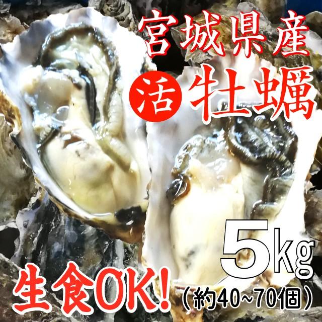 【生食用】宮城産殻付き牡蠣無選別5kg (殻付牡蠣/生ガキ/生ガキ)