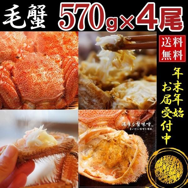 毛ガニ 毛蟹 カニ 蟹 姿 特大 北海道産 ボイル 毛がに 毛蟹 570g×4尾 かに けがに ギフト プレゼント 送料無料 お買い得 かにみそ