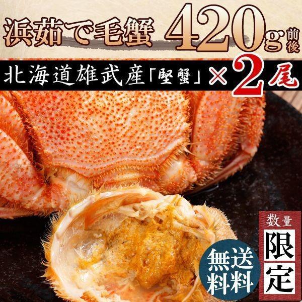 [かに 蟹]毛ガニ特大(毛蟹 数量限定 最高級 北海道産)420g×2尾 送料無料 お歳暮
