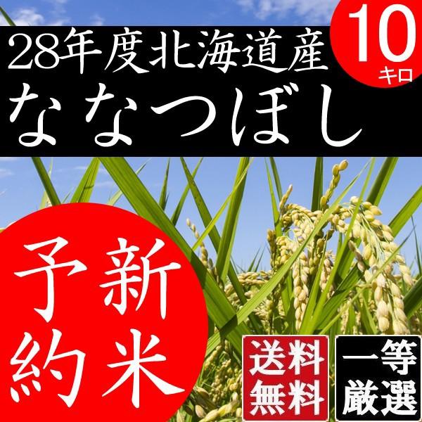 ななつぼし 10kg 北海道米 北海道産 白米