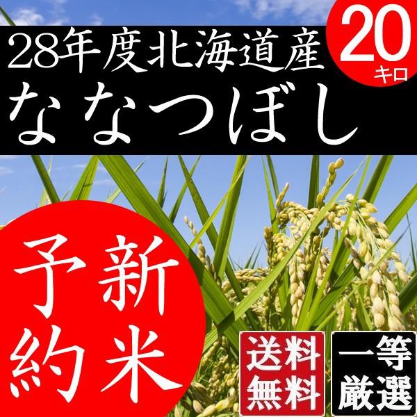 ななつぼし 20kg 白米 北海道米 北海道産 送料無料