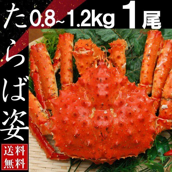 タラバガニ 姿 たらば蟹 脚 足 ボイル 0.8kg〜1.2kg 1尾 冷凍 北海道加工 送料無料 かに ギフト プレゼント お買い得