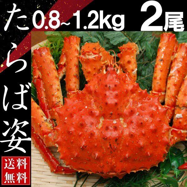 タラバガニ 姿 たらば蟹 脚 足 ボイル 0.8kg〜1.2kg 2尾 冷凍 北海道加工 送料無料 かに ギフト プレゼント お買い得
