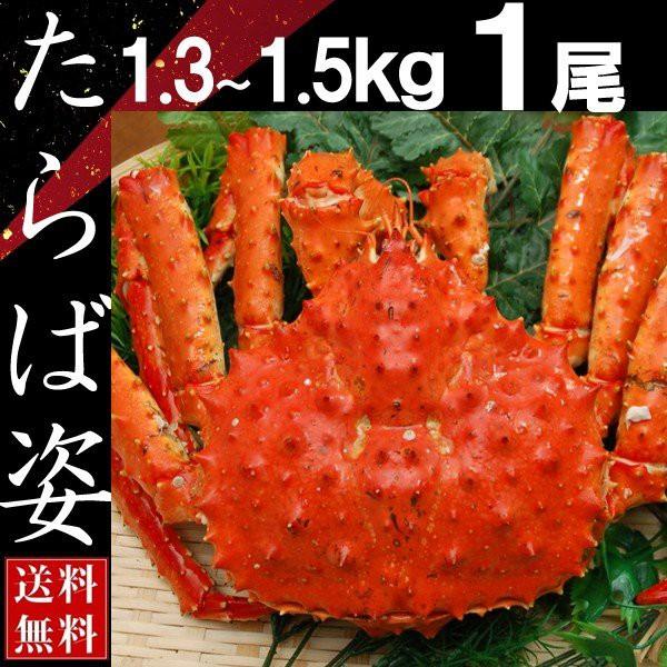蟹 タラバガニ 姿 たらば蟹 脚 足 ボイル 1.3kg〜1.5kg 1尾 冷凍 北海道加工 送料無料 かに ギフト プレゼント お買い得