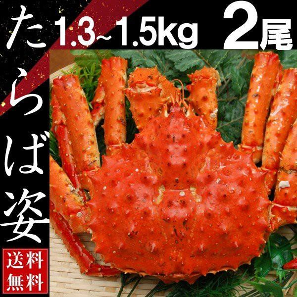 タラバガニ 姿 たらば蟹 脚 足 ボイル 1.3kg〜1.5kg 2尾 冷凍 北海道加工 送料無料 かに ギフト プレゼント お買い得