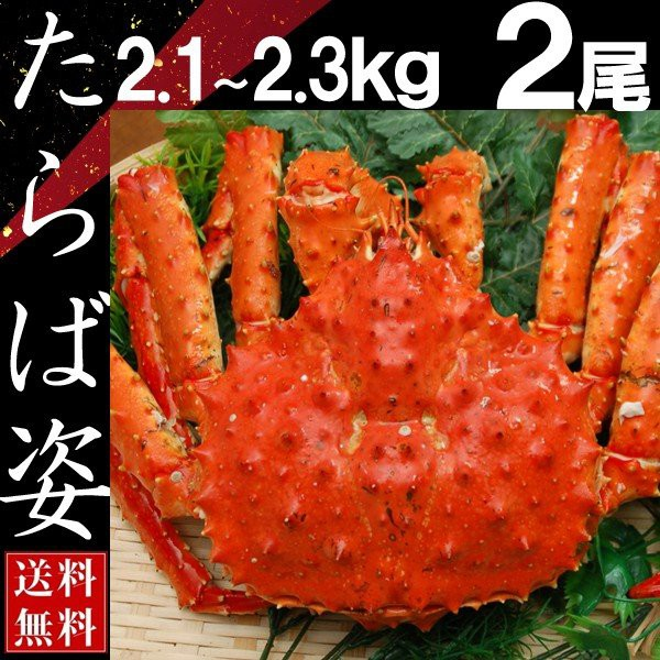 タラバガニ 姿 たらば蟹 脚 足 ボイル 2.1kg〜2.3kg 2尾 冷凍 北海道加工 送料無料 かに ギフト プレゼント お買い得