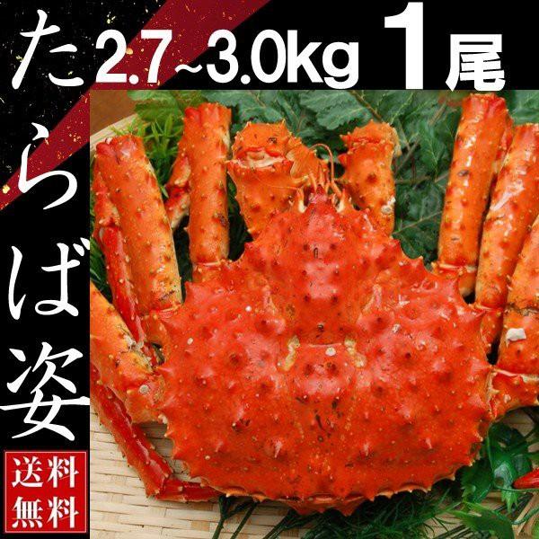 タラバガニ 姿 たらば蟹 脚 足 ボイル 2.7kg〜3kg 1尾 冷凍 北海道加工 送料無料 かに ギフト プレゼント お買い得