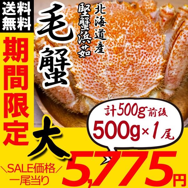 毛ガニ 北海道 毛蟹 姿 500g×1尾 かに けがに 毛がに かにみそ かに足 ギフト カニ お歳暮 ギフト 蟹 送料無料 お買い得