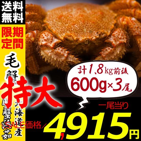 毛ガニ 北海道 毛蟹 姿 600g×3尾 かに けがに 毛がに かにみそ かに足 ギフト カニ お歳暮 ギフト 蟹 送料無料 お買い得