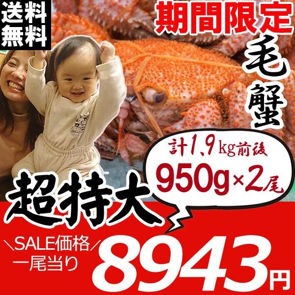 毛ガニ 北海道 毛蟹 姿 950g×2尾 かに けがに 毛がに かにみそ かに足 ギフト カニ お歳暮 ギフト 蟹 送料無料 お買い得
