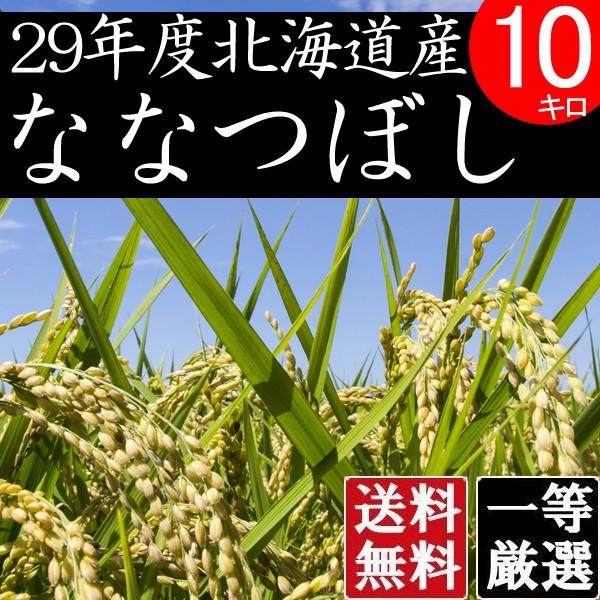 米 10キロ 送料無料 安い ななつぼし 北海道産 お米 10kg 安い 白米 北海道米 検査一等米