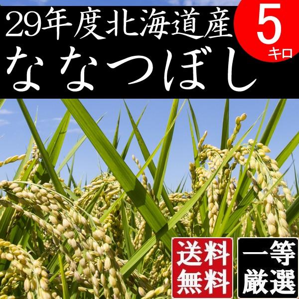 米 5キロ 送料無料 安い ななつぼし 北海道産 お米 5kg 安い 白米 北海道米 検査一等米