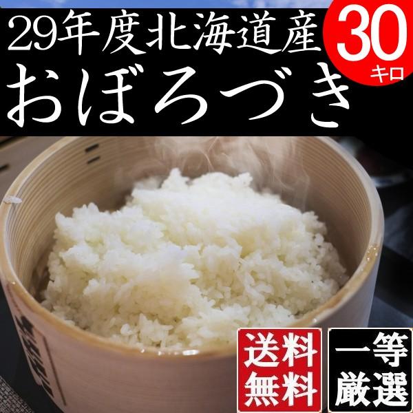 米 10キロ×3 送料無料 安い おぼろづき 北海道産 お米 10kg×3 安い 白米 北海道米 検査一等米