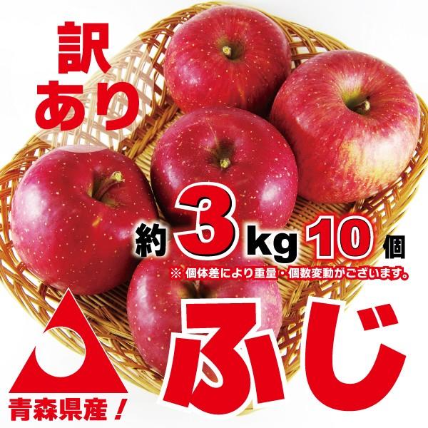 訳あり_青森りんご ふじ_約3kg(約10個入り)