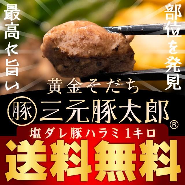 【送料無料】黄金そだち 三元豚太郎 塩ダレ豚ハラミ 500g×2パック 計1kg 焼肉 BBQ バーベキュー おつまみ