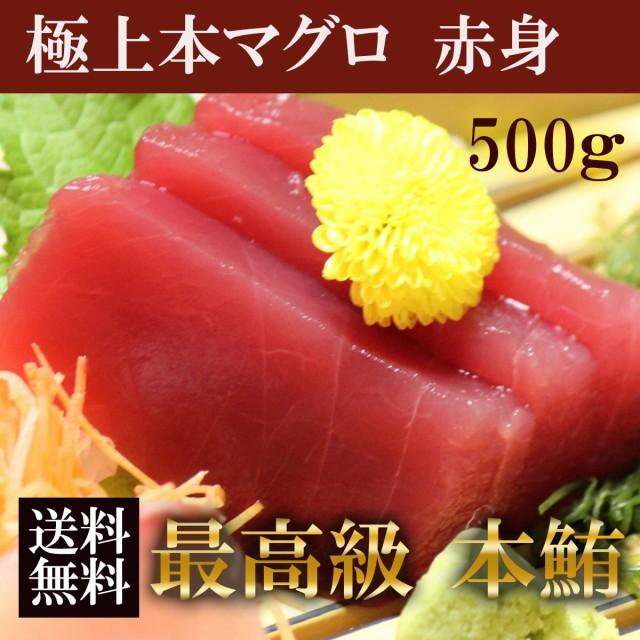 極上本マグロ 赤身 500g(250g×2) 塊【大阪市中央卸売市場 直送】 刺身 鮮度抜群 品質保証 まぐろ マグロ 赤身 冷凍食品 ギフト お歳暮