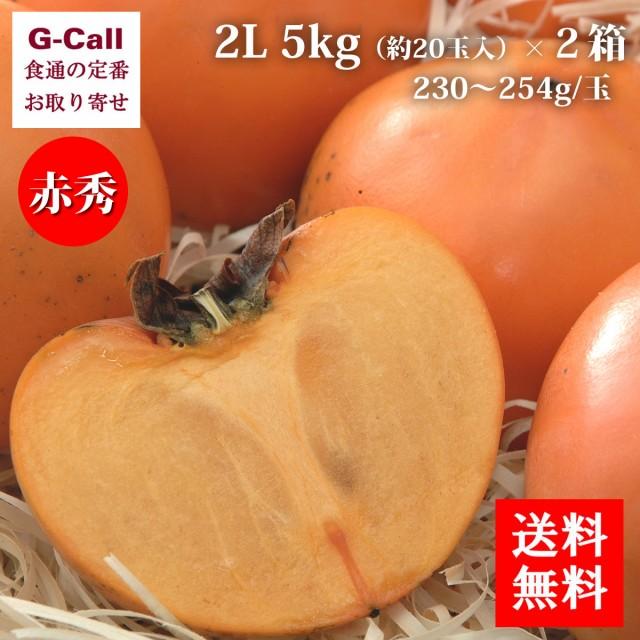 花御所柿 赤秀 2L 5kg 約20玉入 2箱 JA鳥取いなば 送料無料 はなごしょがき 鳥取県産