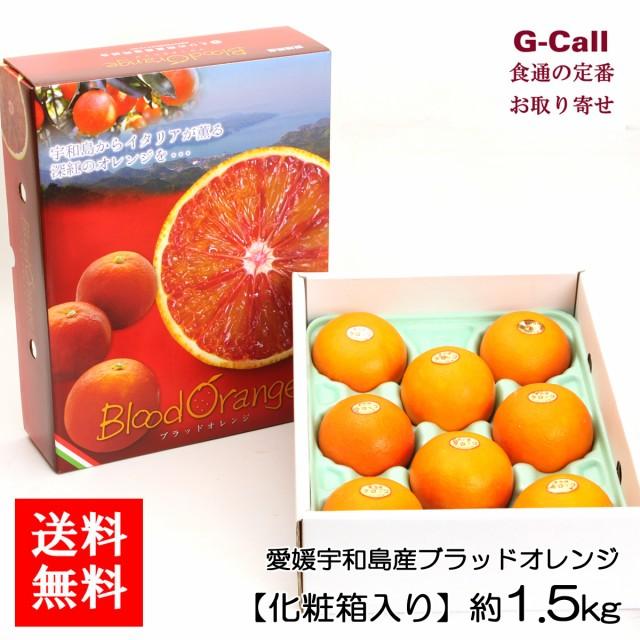 送料無料 愛媛宇和島産ブラッドオレンジ 約1.5kg 化粧箱入り