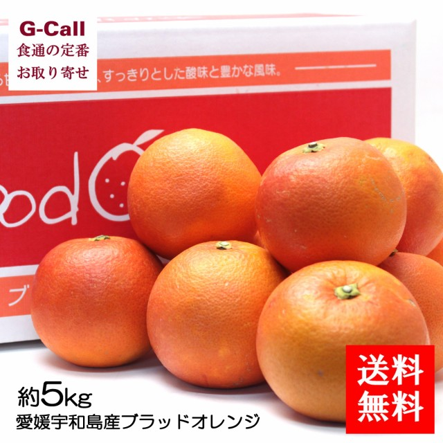 送料無料 愛媛宇和島産ブラッドオレンジ 約5kg 段ボール箱 ご家庭用