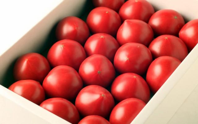 高知 おかざき農園 リサ・フルーツトマト 2k箱(24〜42個)