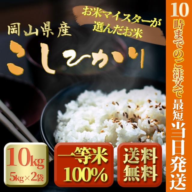 令和元年 新米 岡山県産こしひかり10kg 5kg×2袋 お米 送料無料 コシヒカリ 10キロ 北海道沖縄離島は追加送料