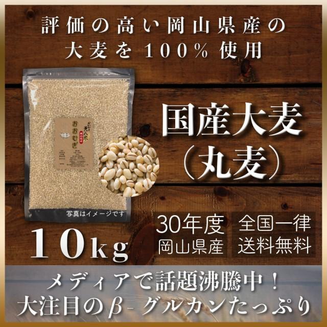 令和元年 国産大麦(丸麦) 10kg もち麦の代わりに 送料無用 安い お試し おすすめ ポイント消化 ぽっきり 岡山県産100%