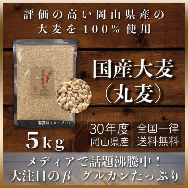30年度 新麦 国産大麦(丸麦) 5kg もち麦の代わりに 送料無用 安い お試し おすすめ ポイント消化 ぽっきり 岡山県産100%