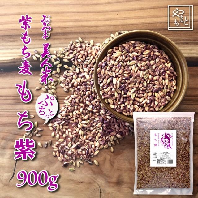 令和元年 新麦 岡山県産 紫もち麦(ダイシモチ) もち紫 900g  送料無用 安い お試し おすすめ ポイント消化 ぽっきり ダイエット健康美容