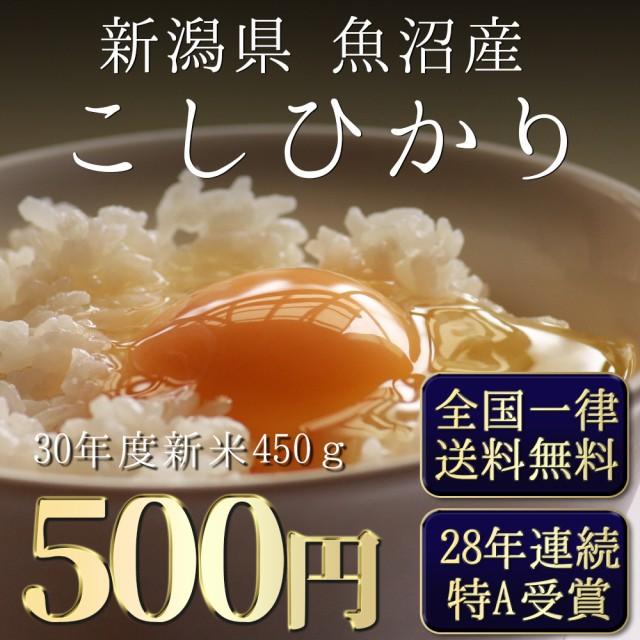 令和元年 新米 ポイント消化 最安値 安い お試し 新米 お米 魚沼産コシヒカリ 450g 送料無料 こしひかり 一等米 1kg 以下