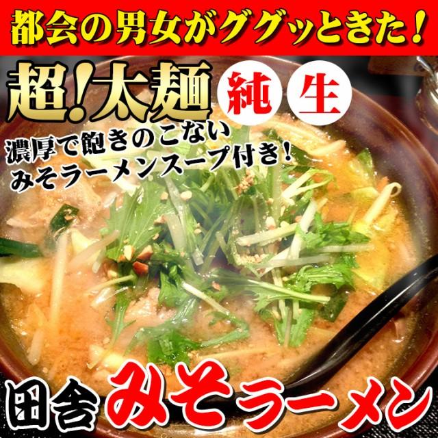 ☆【送料無料】讃岐 生極太 みそラーメン 5人前スープ付