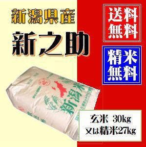 新潟県産 新之助 玄米30kg 又は 白米27kg(小分け可) 令和元年産 送料無料(本州のみ)