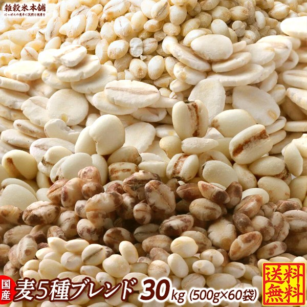 雑穀 麦 国産 麦5種ブレンド(丸麦/押麦/はだか麦/もち麦/はと麦) 30kg(500g×60袋) 送料無料 ダイエット食品 置き換えダイエット 雑穀米