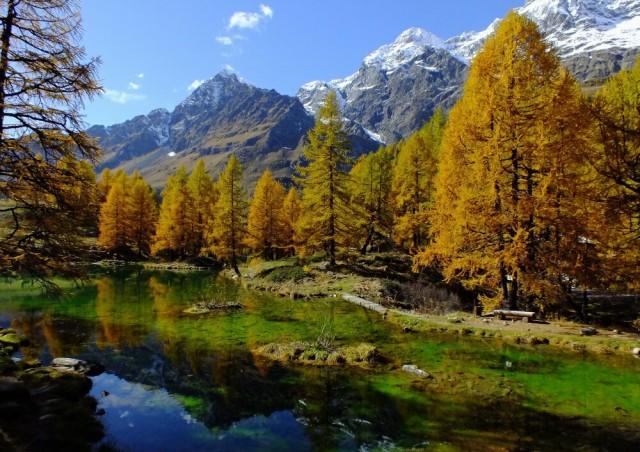 絵画風 壁紙ポスター 森林 森林浴 ラーゴブルー 北イタリア マッターホルン (はがせるシール式) キャラクロ SNR-005A1 (A1版 830mm×5