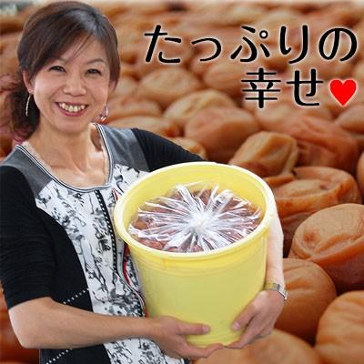 紀州南高梅たっぷり10kgお好みの塩分、お味の梅干しをお選びくださいませ。業務用梅干し 売れ筋 グルメ【特別価格】【送料無料】