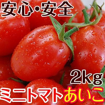 2019年ご予約開始!ミニトマトあいこ(アイコ)2kg【送料無料】和歌山のエコファーマーが減農薬・減化学肥料で作るこだわりの果肉・栄養