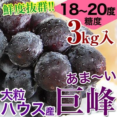 鮮度抜群!朝採り巨峰3kg(6〜9房入)ご予約開始!■ハウス栽培■糖度18〜20度!大変みずみずしく、甘さたっぷりの大粒ぶどう
