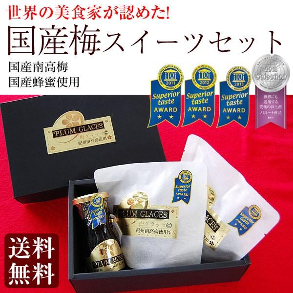 送料無料 プチギフト 内祝い 国産完熟南高梅スイーツセット(小)梅グラッセ(5粒×2袋)、梅蜜(120g×1瓶) 完熟南高梅・国産はちみつ使用
