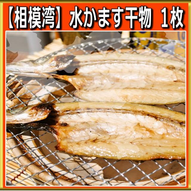 水かます干物 1枚 小田原 カマス お取り寄せ ギフト プレゼント 魚 食品 食べ物 おかず ご飯のお供