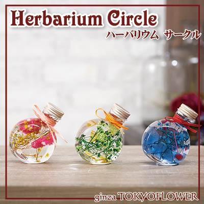 ハーバリウムギフト ハーバリウム サークル PBG 送料別 W7.2 x D4.7 x H9.3cm 植物標本 プレゼント お彼岸 敬老の日 贈答