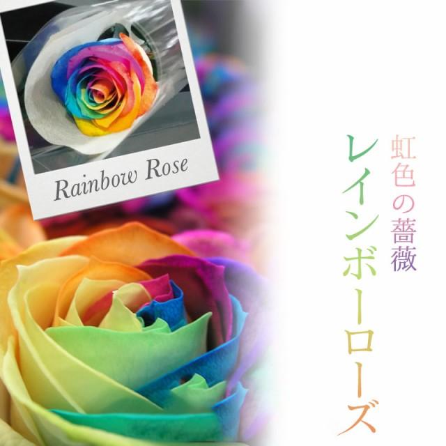 ブラックボックス レインボーローズ バラ一輪の花束 レインボーローズ 生花 誕生日 プロポーズ 結婚 記念日 贈答 ハロウィン お歳暮
