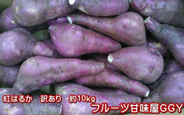 紅はるか 蔵出し 訳あり 箱込10キロ(9kg+保証分500g)さつまいも 蜜芋 熊本産 サイズ 大・中・小【指定不可】グルメ