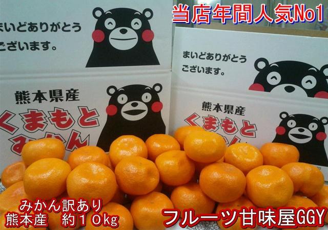みかん 訳あり 箱込10キロ(9kg+保証分500g)熊本産 フルーツ グルメ