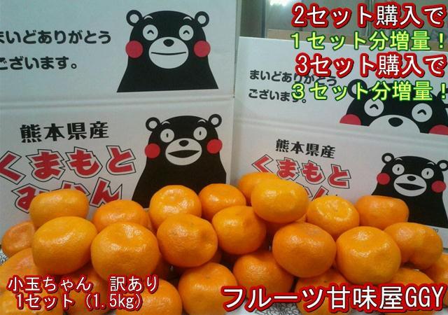 【セット】小玉ちゃん 訳あり 1セット1.5kg 熊本産 2セット購入で1セットおまけ!3セット購入で3セットおまけ!熊本産 ご家庭用
