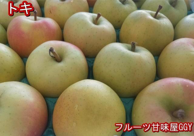 トキ 約5kg【約10〜28玉】長野・青森産 りんご リンゴ 林檎 グルメ
