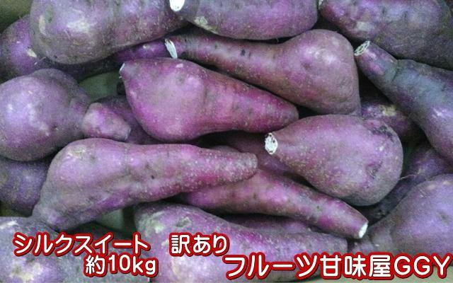 シルクスイート 蔵出し 訳あり 箱込10キロ(9kg+保証分500g)さつまいも 蜜芋 熊本産 サイズ 大・中・小【指定不可】