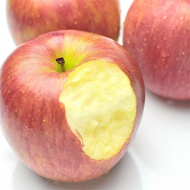訳あり りんご 5kg 旬の産地より 送料無料