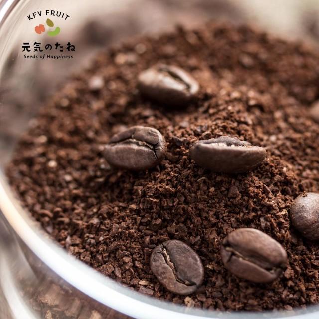 スペシャリティコーヒー genki coffee 始動 1kg 送料無料 高級 ギフト にも