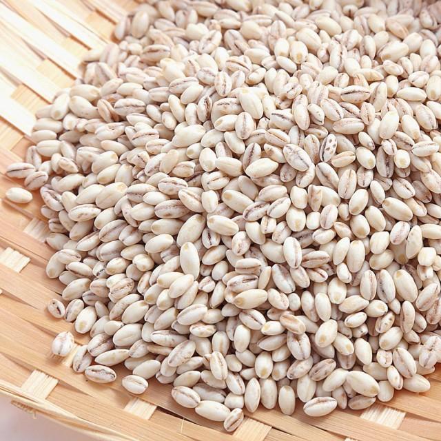 国産 もち麦 無添加 業務用 5kg スーパーフード もちむぎ